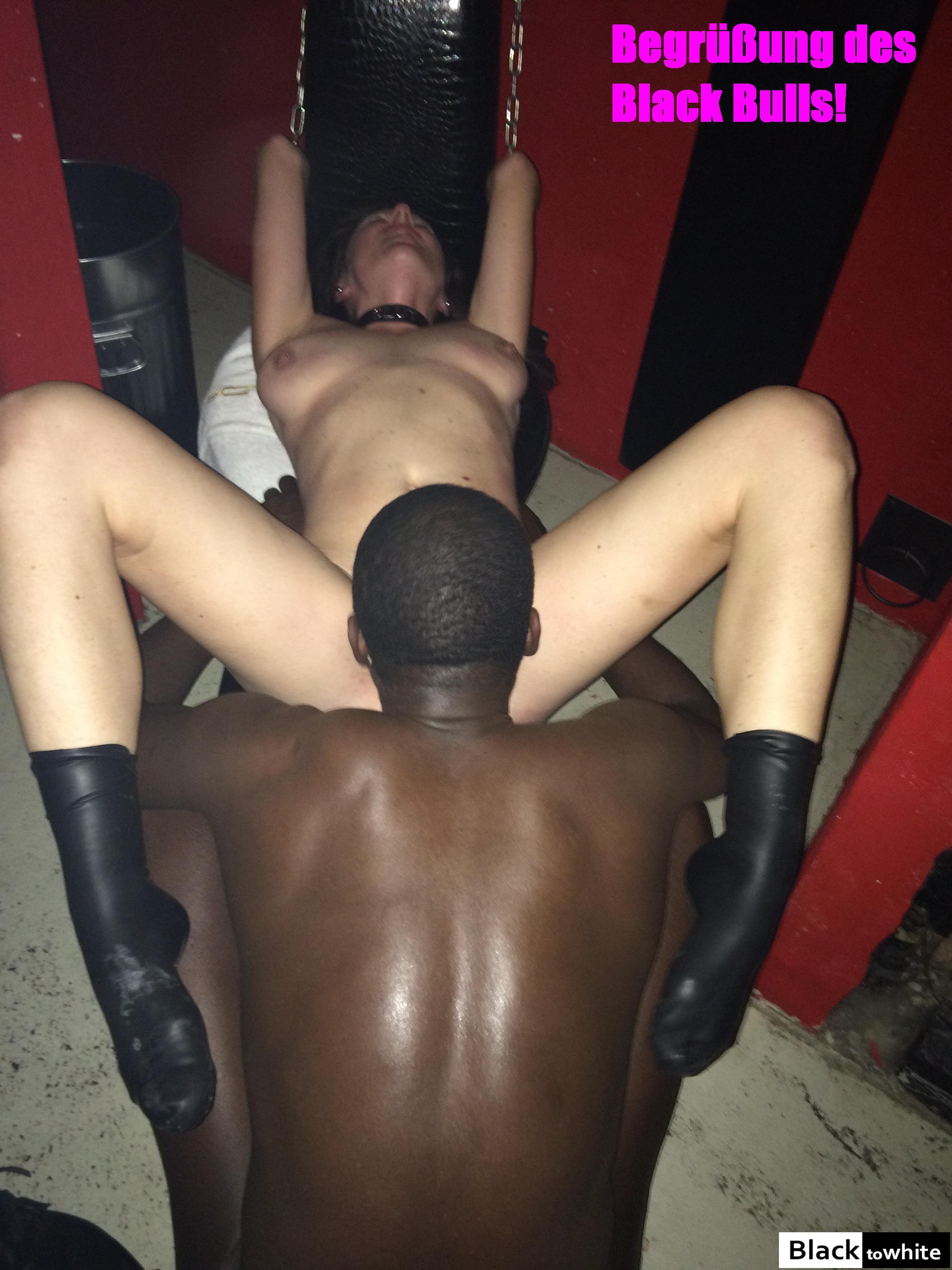 Amateur Hotwife black bull an hotwife amateur interracial community cuckold