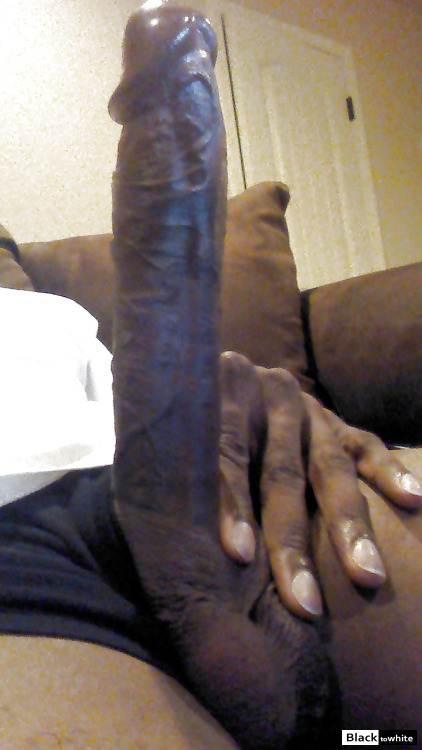 A picture of a big black dick